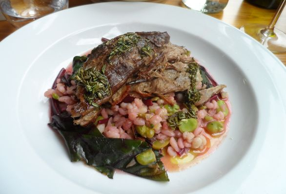 Slow roast shoulder of lamb with broad beans, barley and beetroot leaves