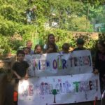 Protecting Trees in Golden Lane – Petition