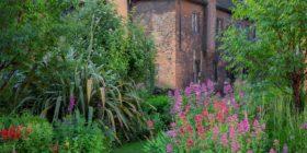 New Open Gardens evenings at the Charterhouse