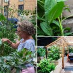 St Luke's celebrates volunteer gardening groups with three awards